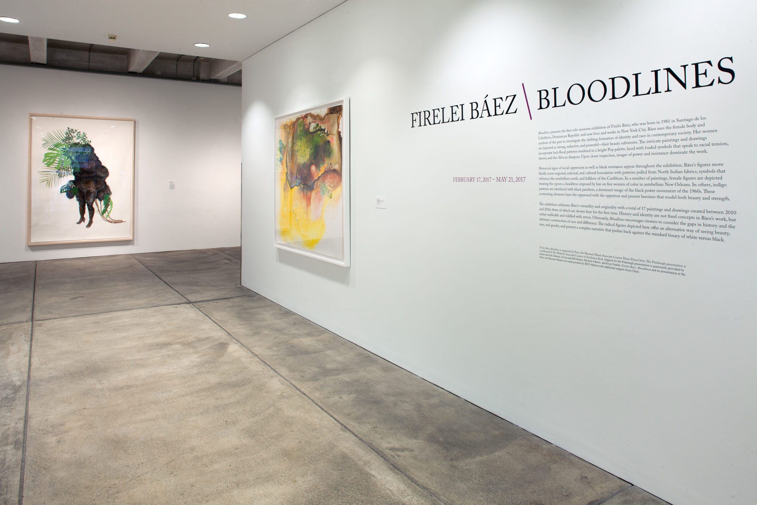 A gallery featuring wall text explaining Firelei Baez's Bloodlines exhibition and two large abstract paintings by the artist.