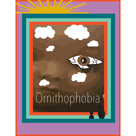 A collage with a sun, clouds, and crying eye with the text Ornithophobia at the bottom